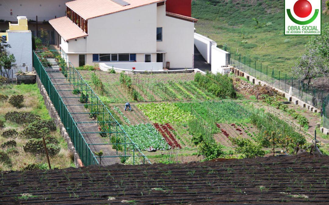 Agricultura Obra Social de Acogida y Desarrollo